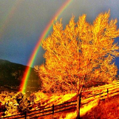 Golden Rainbow.jpg