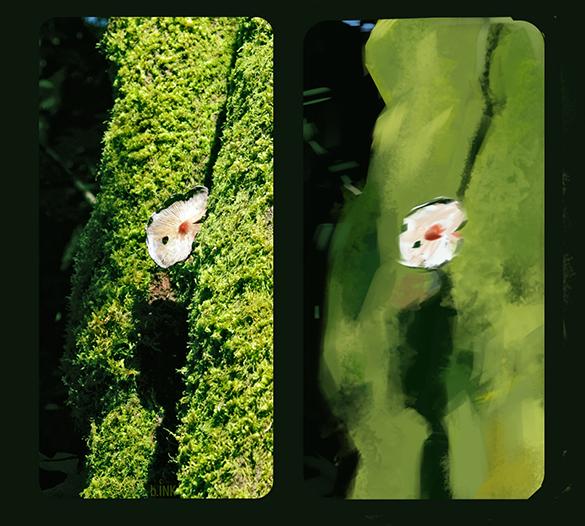 1_paint_study_mushroom.jpg