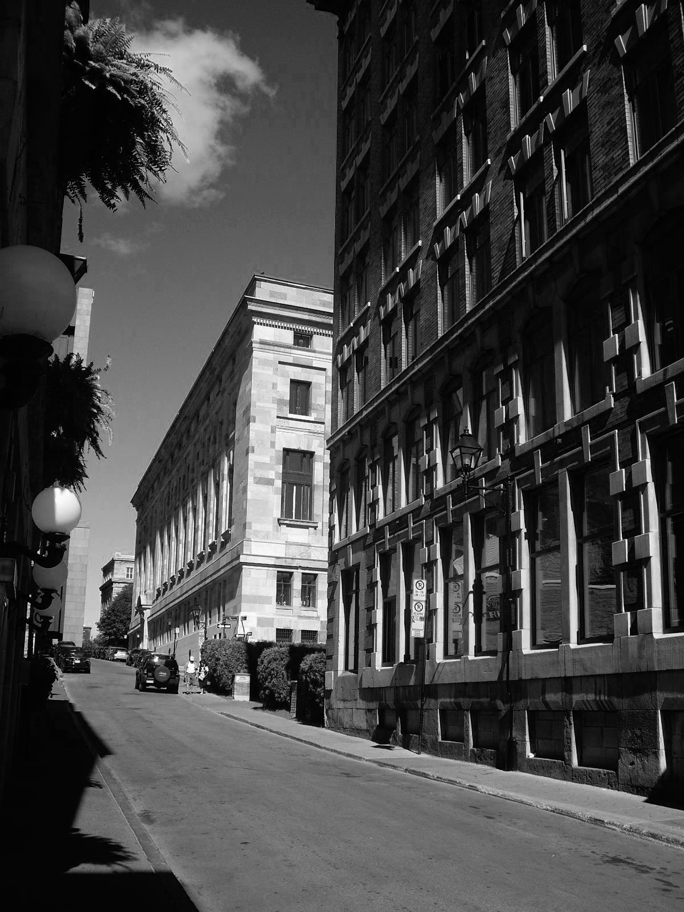 CMD-Streetscape-04.JPG