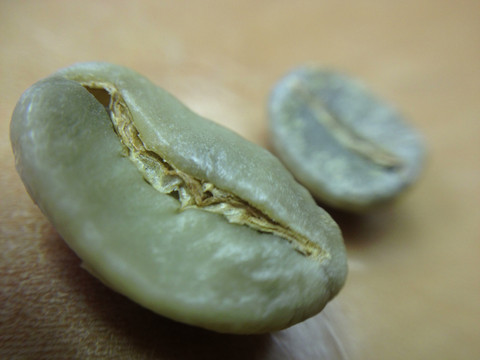 Here is a comparison of the legendary Elephant Bean (Maragogype). Laugh now, and laugh quickly when you open the bag of the Hartmann Maragogype from P&S, but your laughter will quickly be smothered by the aroma of delicious fruits and fresh Tobacco and then you will laugh at yourself for being so brazen. Then, don't forget to grind and brew.