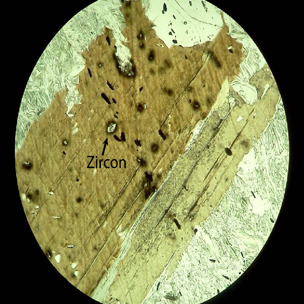 Fig. 1: Microscope image of a thin section. The brown mineral is biotite, a form of mica. The small crystals in it are zircons, and the dark patches around the crystals were caused by radiation damage from decaying uranium.