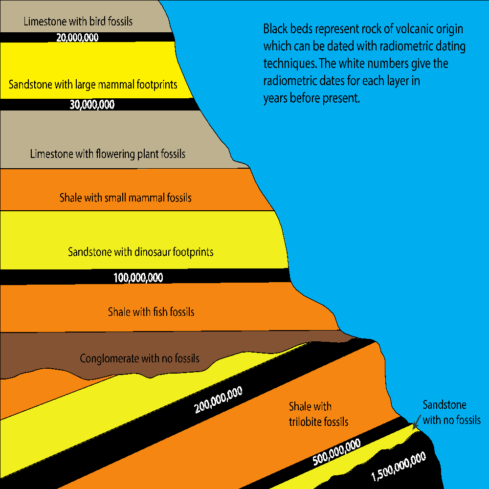 Fig. 3: This is a very condensed, hypothetical outcrop representing a large part of the geological column. If the radiometric dates for the black beds are correct, then it is very difficult to explain the existence of so many fossils sandwiched in between the dated beds.