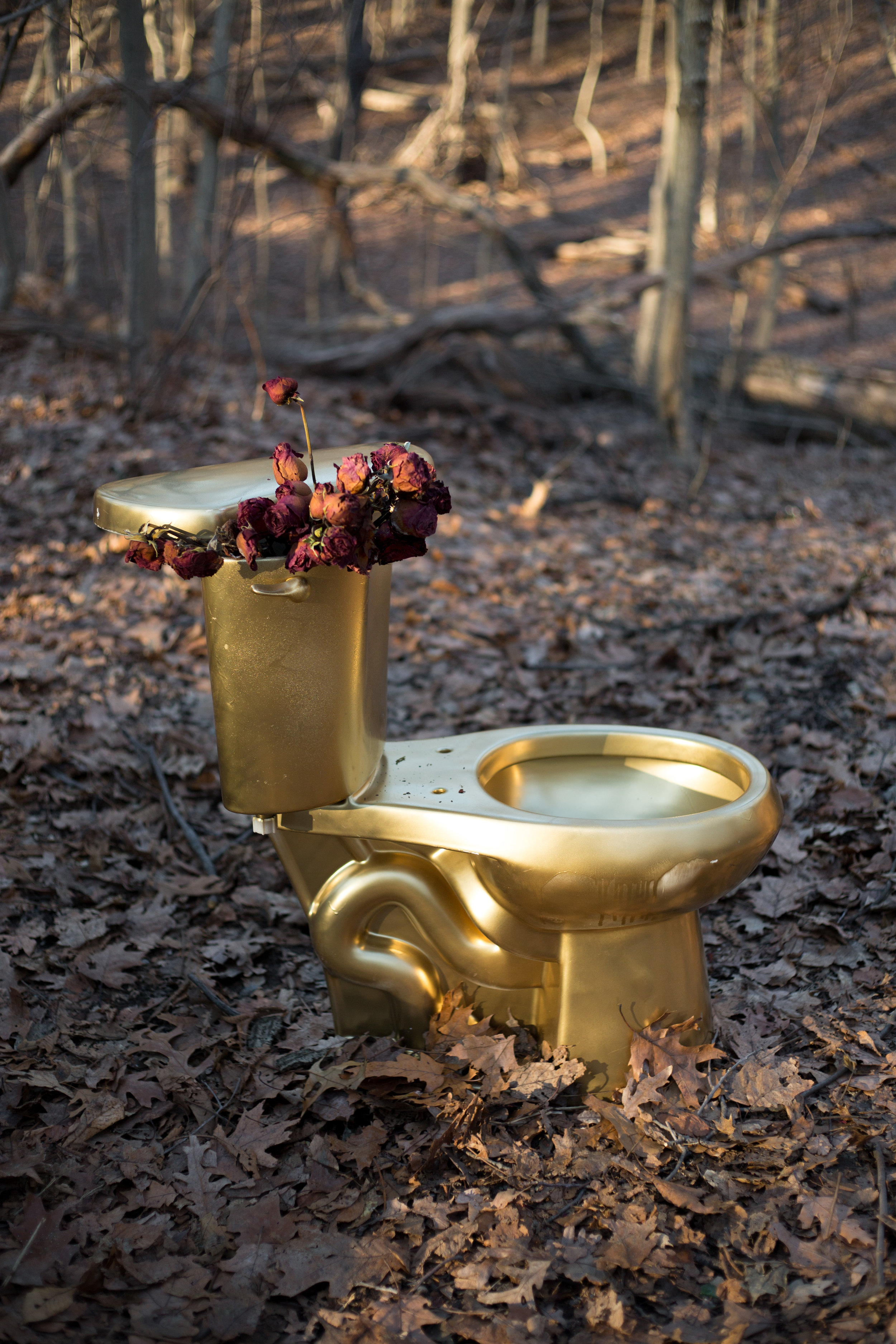 MM1 Toilet.jpg