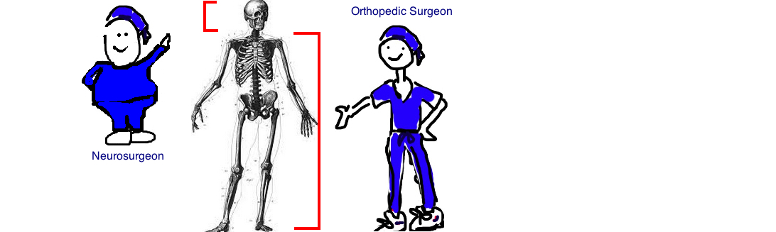 orthopedic surgeons take care of everything from neck down