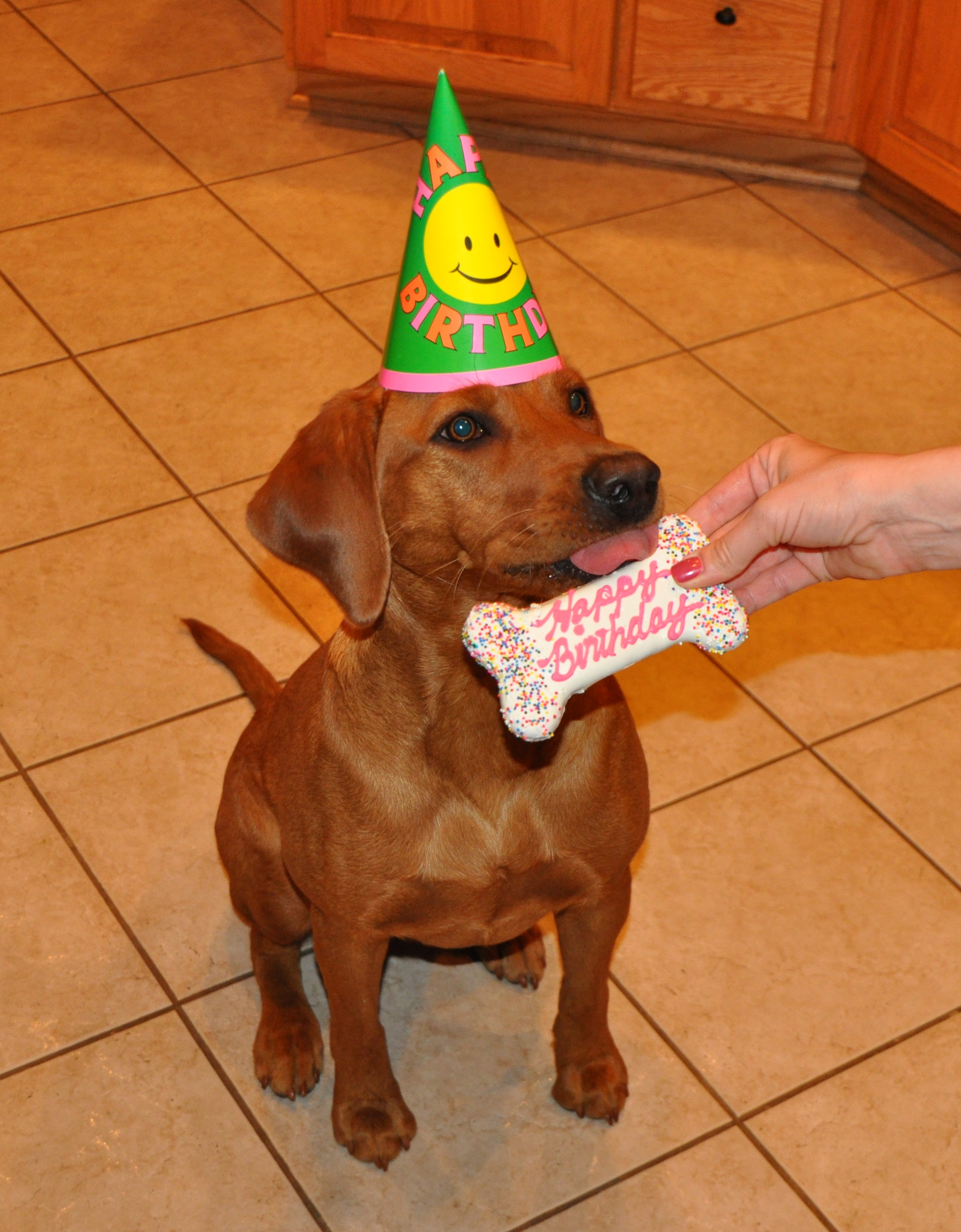 Robin, the Birthday Girl, with her EOTL cookie!