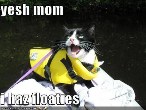 lolcat_mother'sday2014-3.jpg