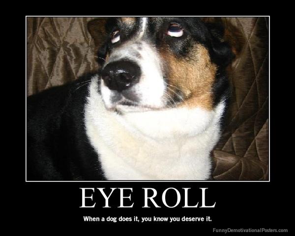 loldog_eyeroll.jpeg