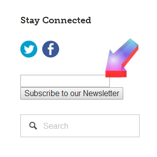 """Do you get our newsletter?? It's EASY to subscribe! Look for the """"Stay Connected"""" header at the top of the right column of our blog site."""