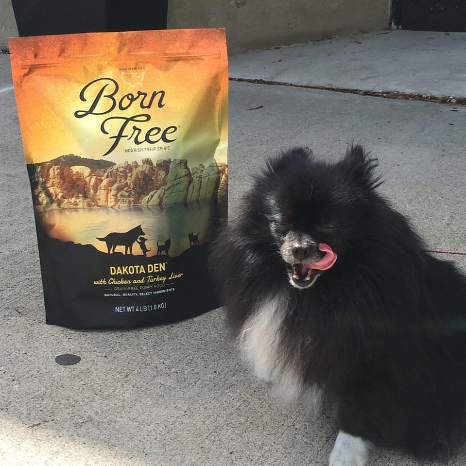 Stop in our stores for some amazing deals on pet food--kibble, canned, raw and freeze-dried.