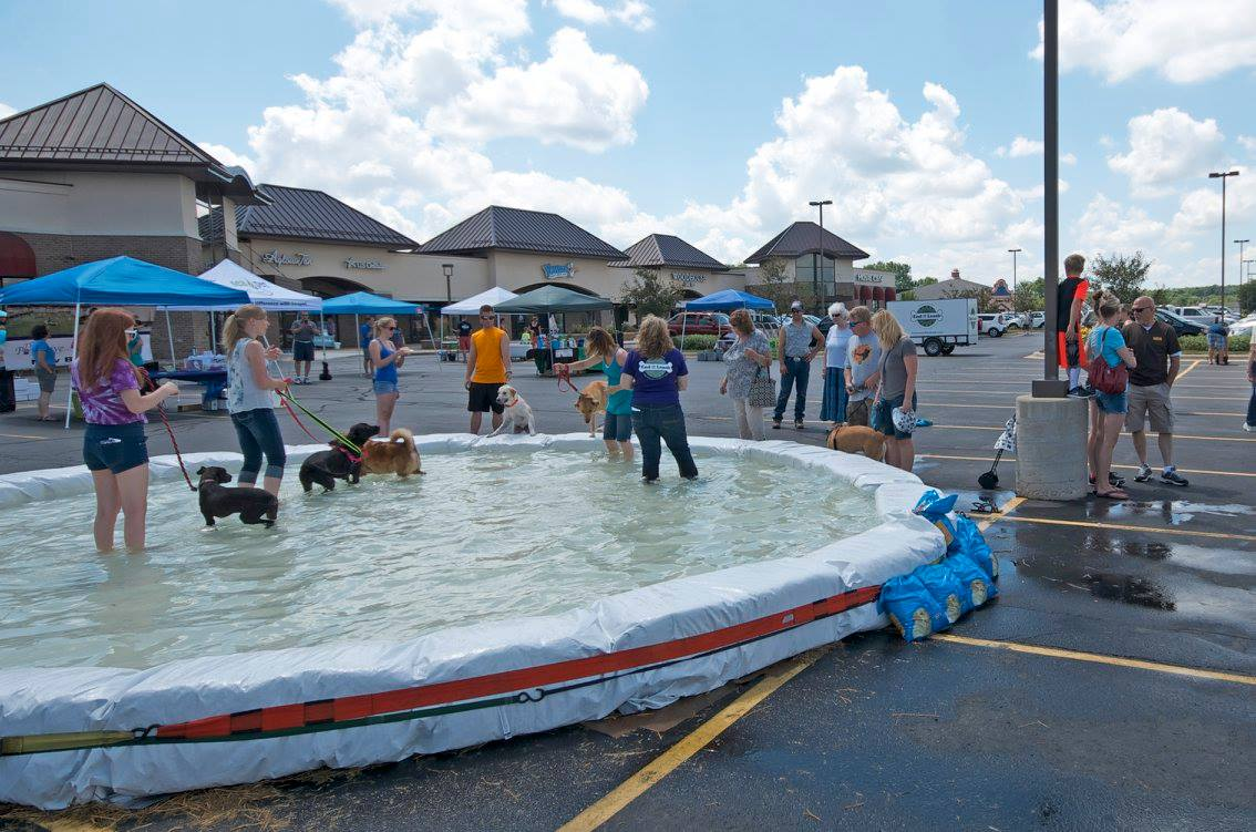 Come and cool off in our wading pool!