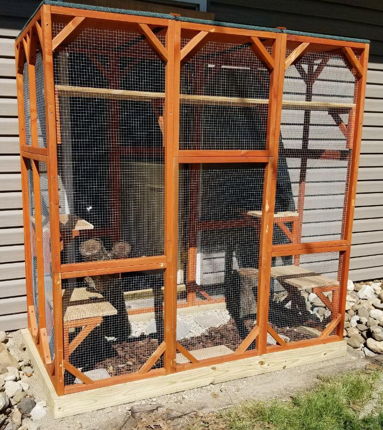 Catio: safe, outdoor access for inside cats.