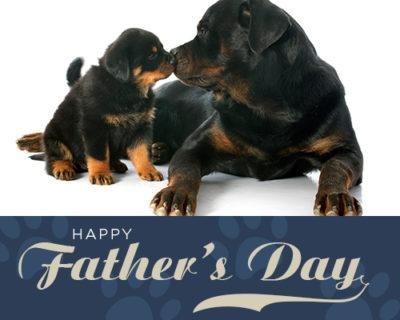 fathersday2.jpg