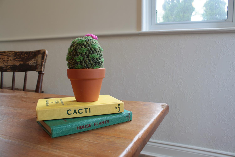 cacti001.jpg