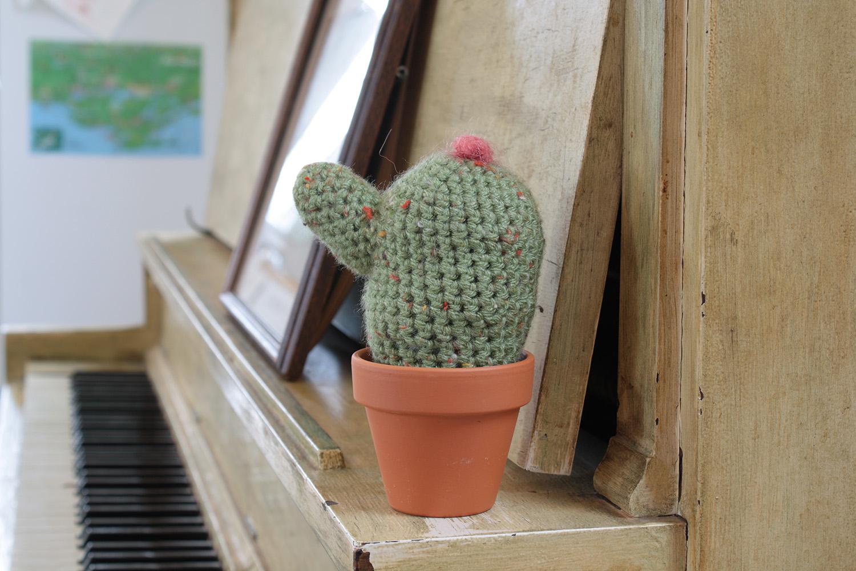 cacti007.jpg