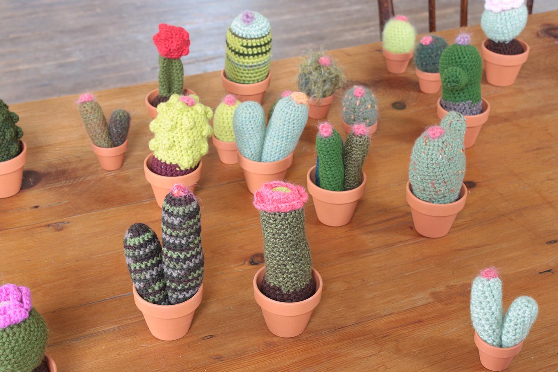 cacti009.jpg