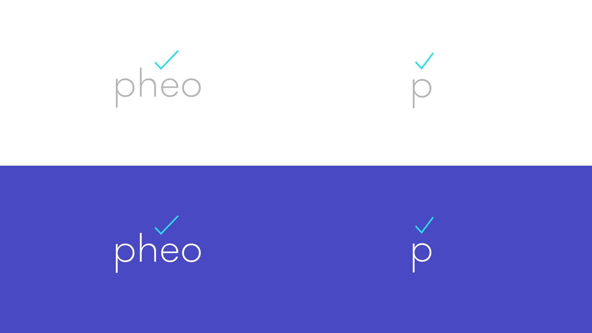 Pheo_process_Page_13.jpg