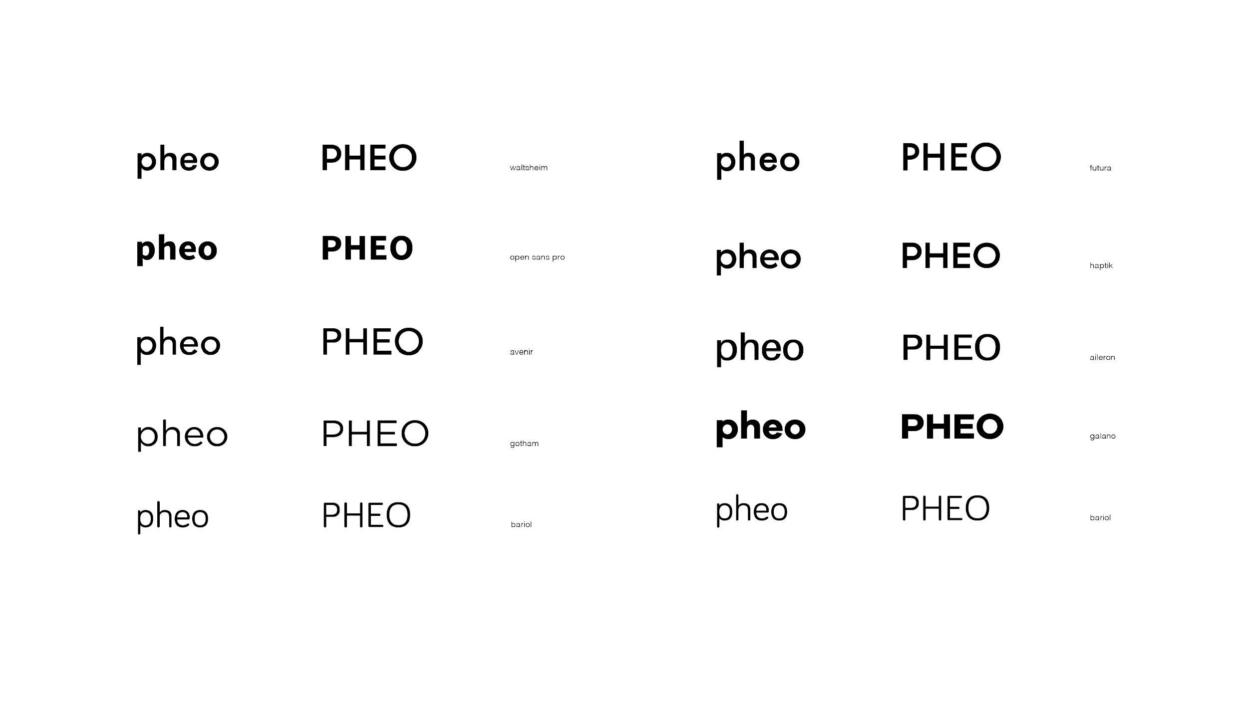 Pheo_process_Page_19.jpg