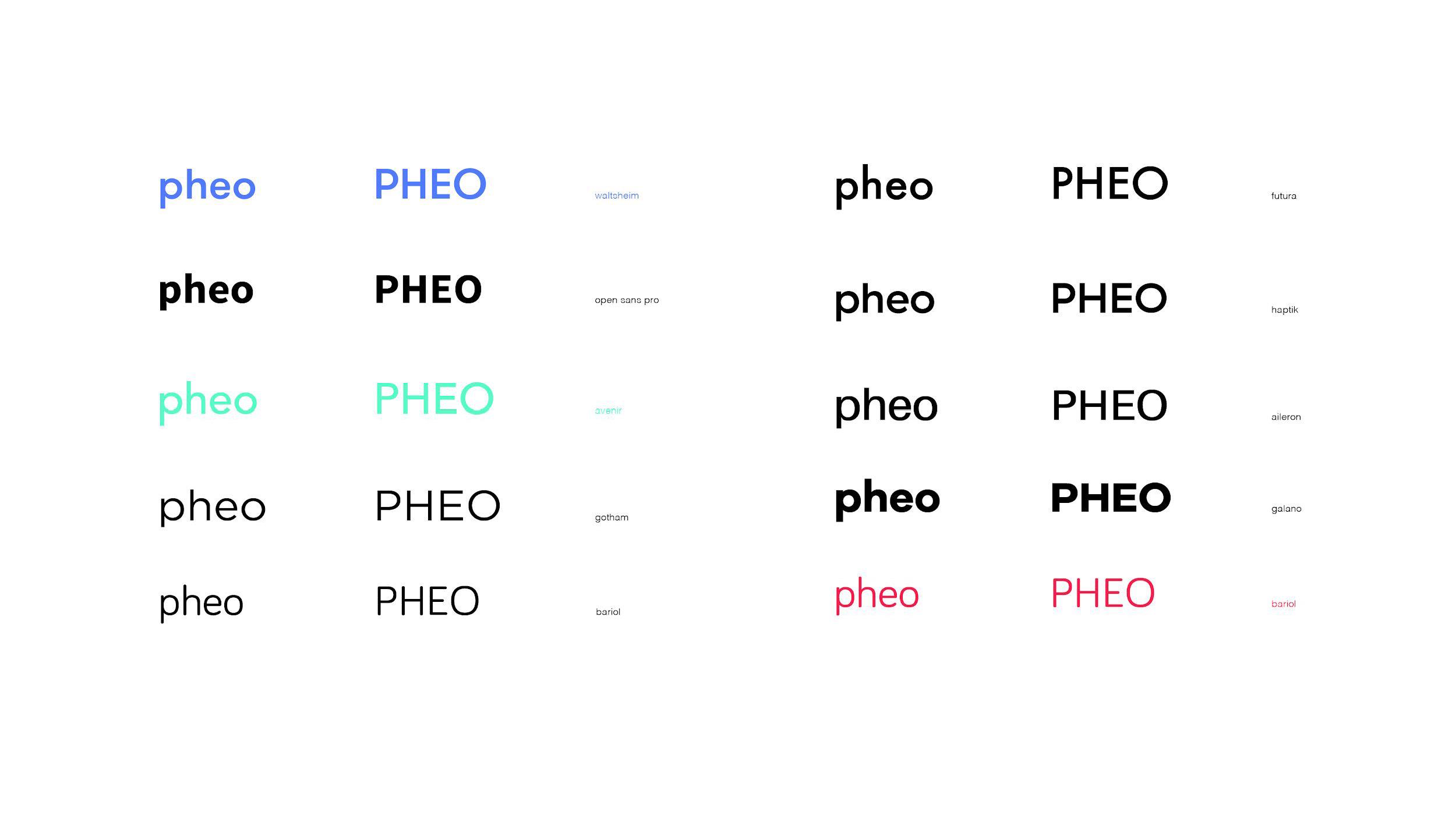 Pheo_process_Page_20.jpg