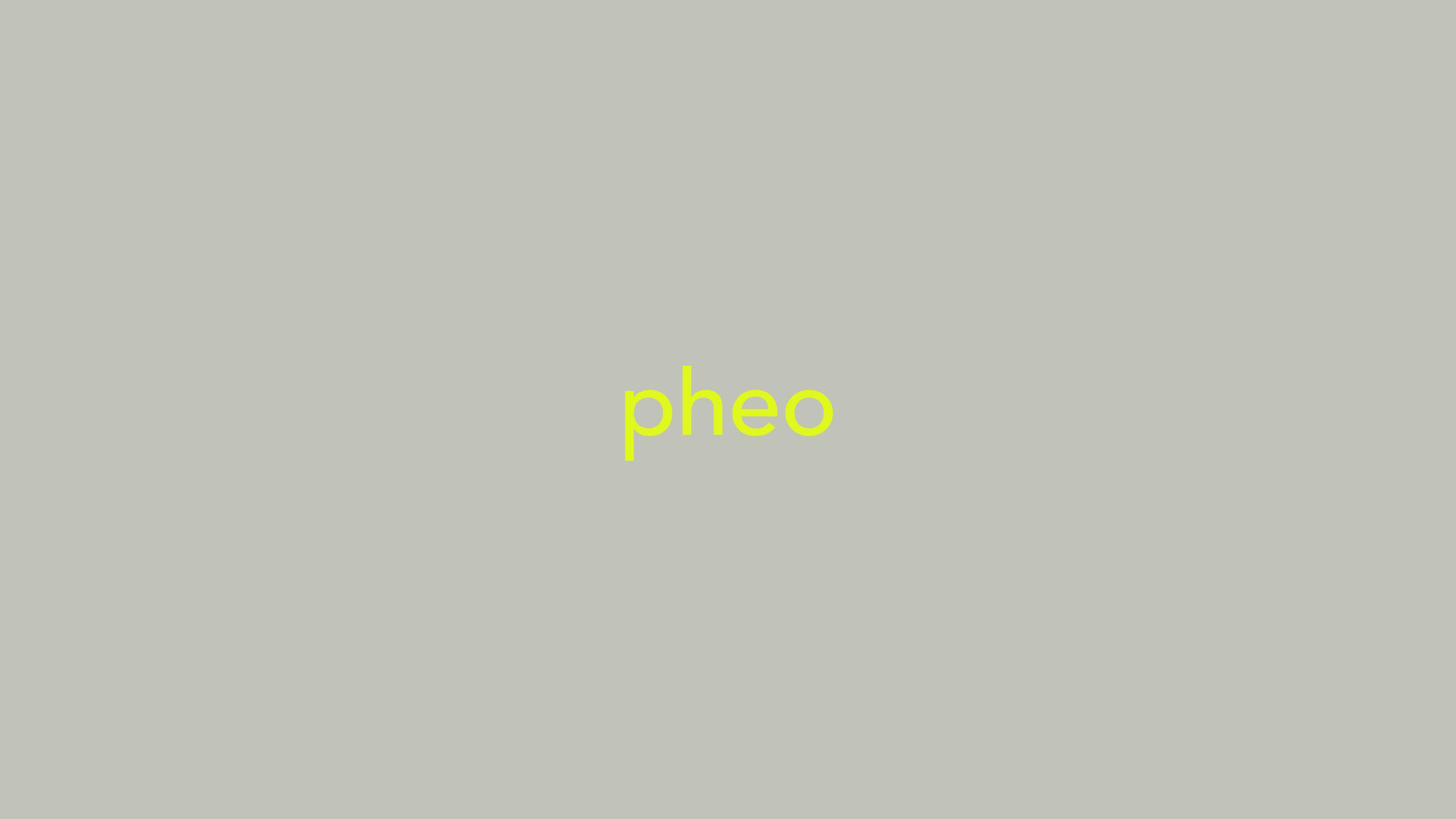 Pheo_process_Page_32.jpg