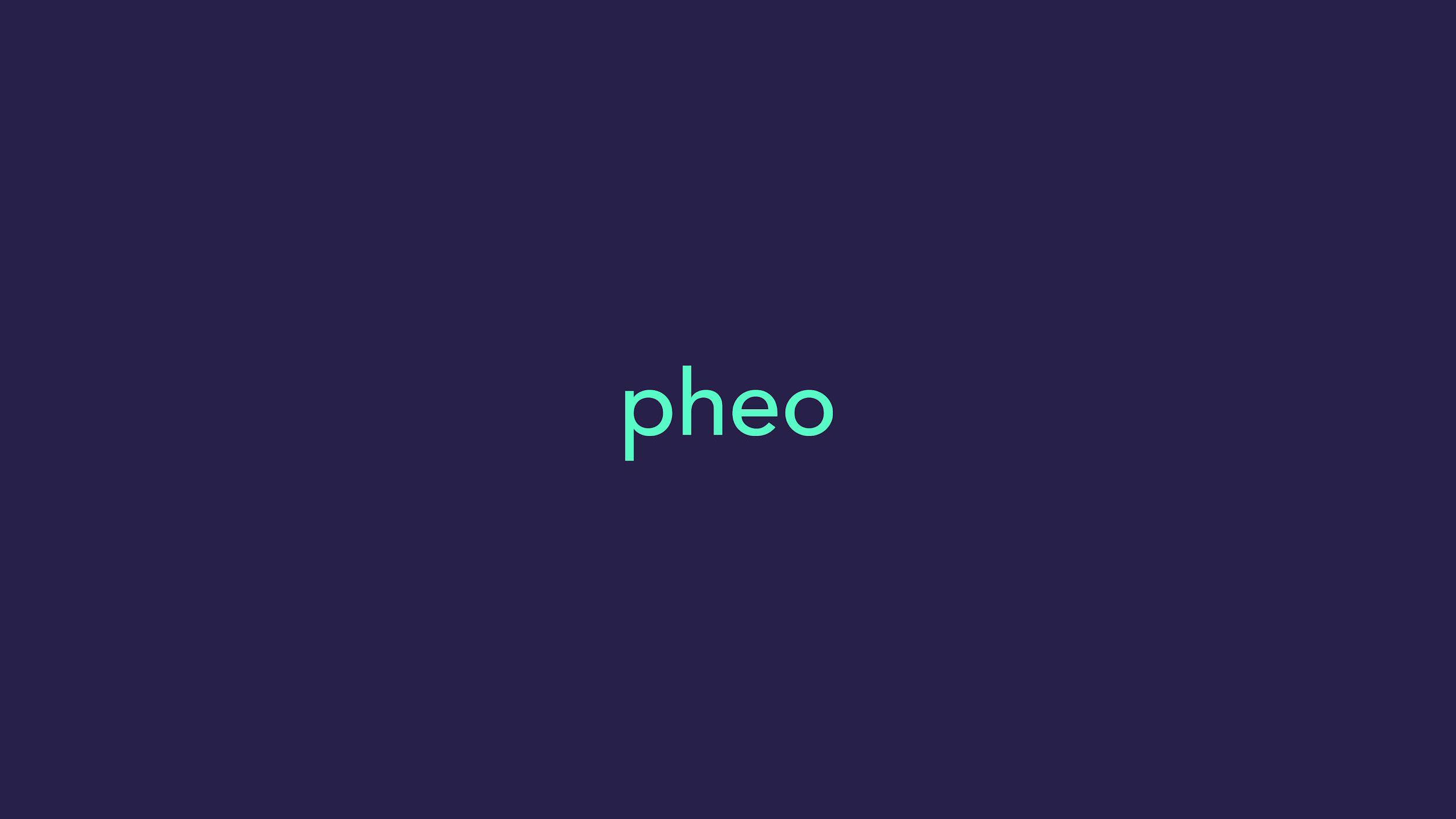 Pheo_process_Page_38.jpg