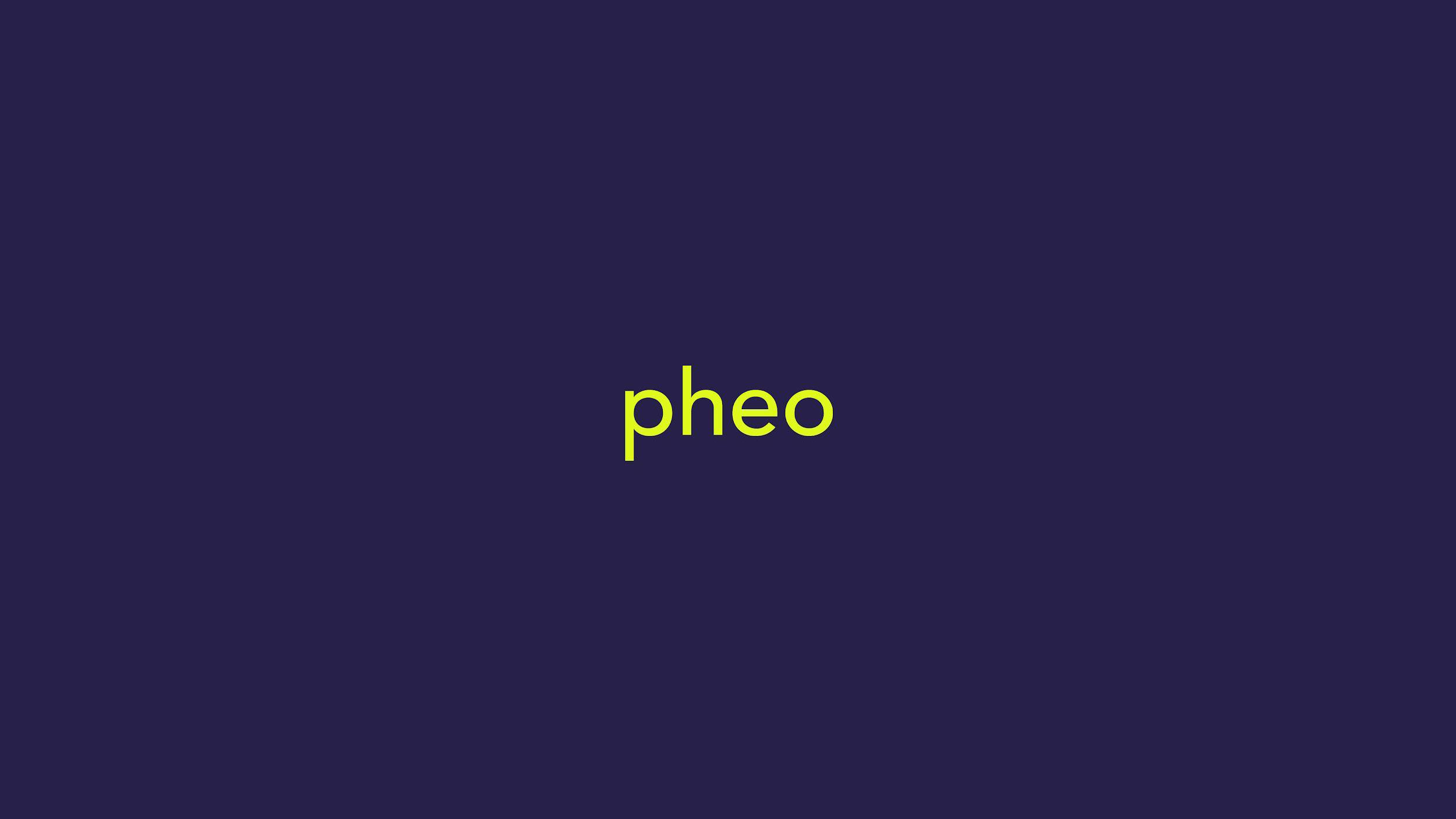 Pheo_process_Page_41.jpg