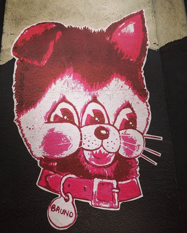 My name and a three eyed cat /dog. _ #eastlondon #shoreditchstreetart #streetart #streetartphoto #london