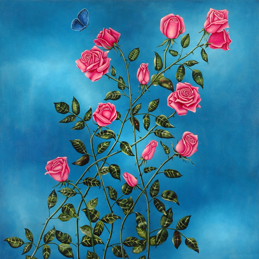 Pink Roses - Delicate Ascent