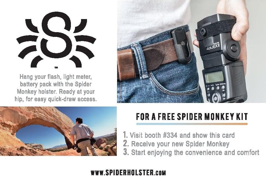 Spider.back.jpg