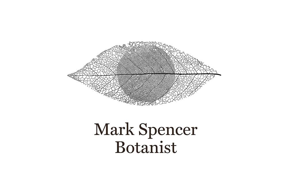 mark-spencer-01.jpg