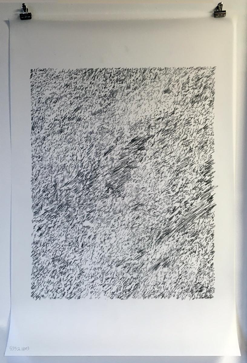 "Silver leaf (study 1),  2019  Mylar, graphite  18"" x 24"""
