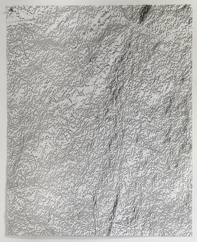 "Silver leaf, (hidden) , 2019  Digital print on bond paper, graphite  20"" x 30"""