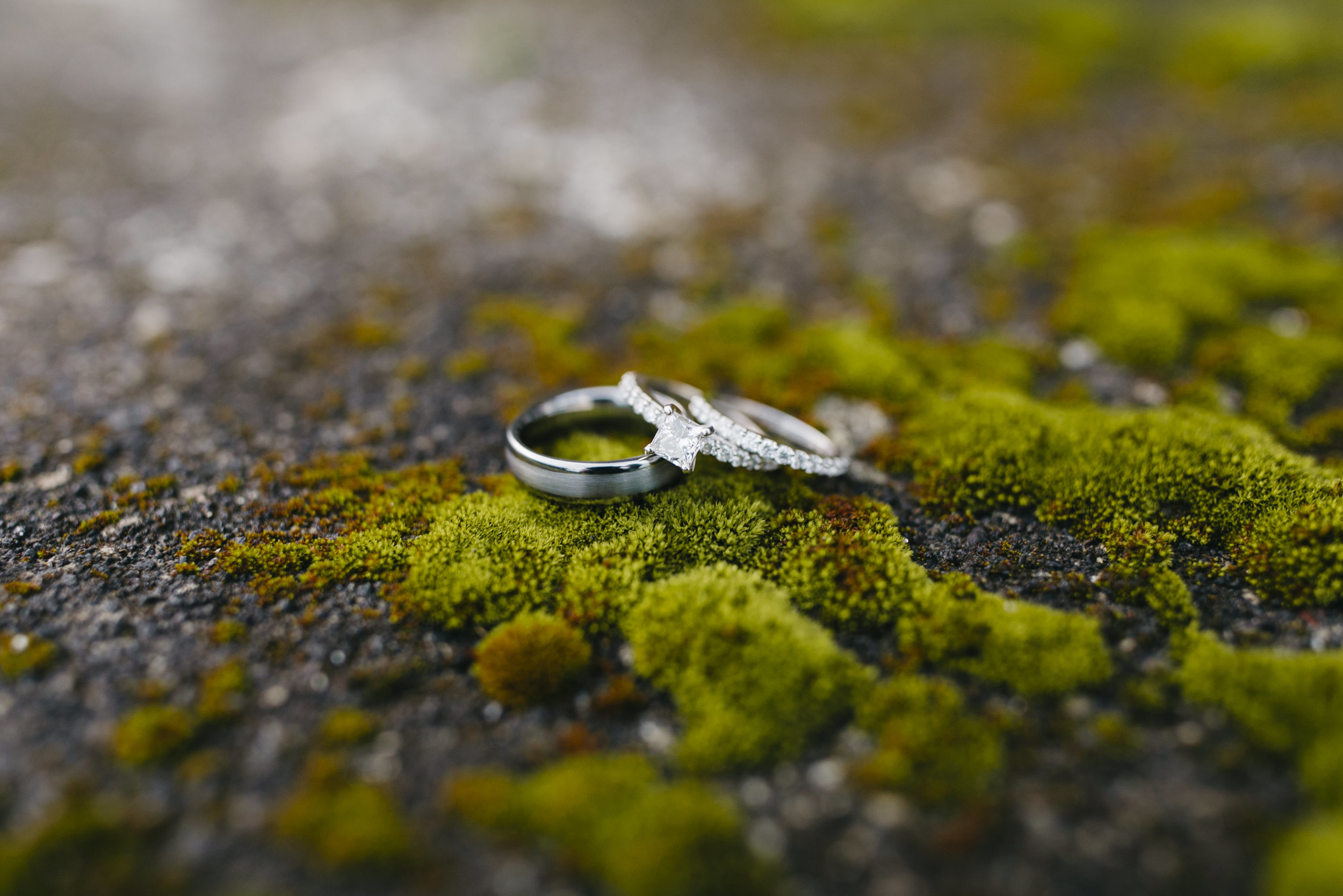 Iceland Elopement photographers Colby and Jess set up a couple's wedding rings on a beautiful bed of moss, colbyandjess.com