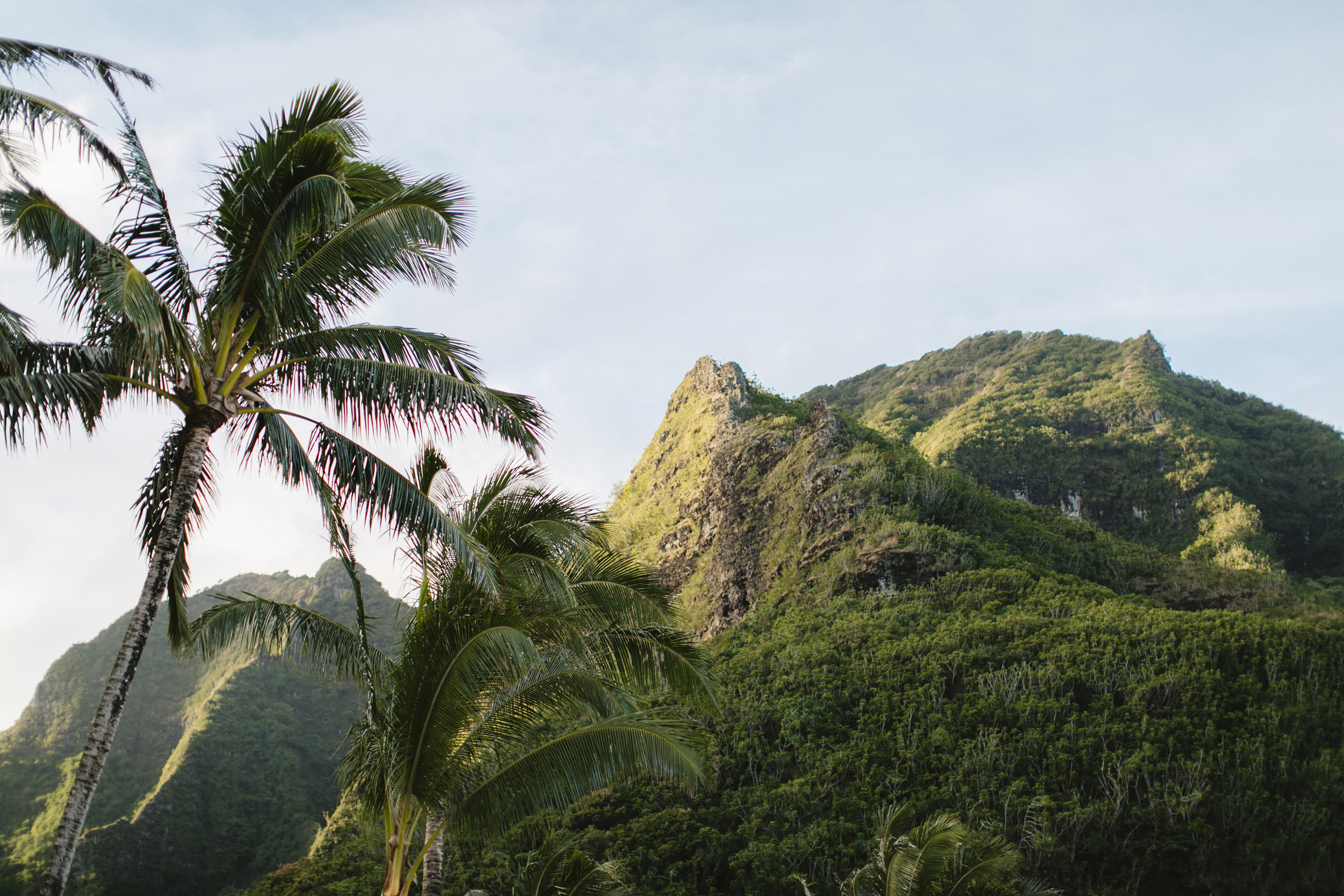 Tunnels Beach Kauai Hawaii Elopement Photographer
