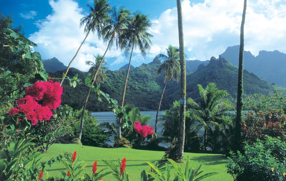 Photo via: About Australia Fiji Vacations