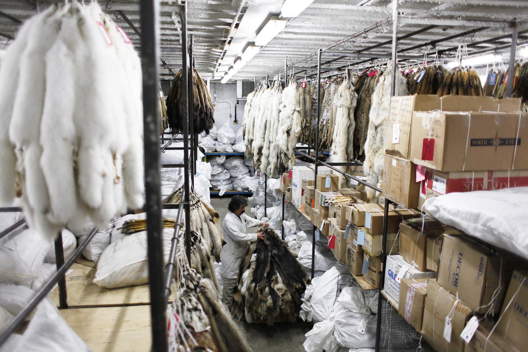 The Fur Trade