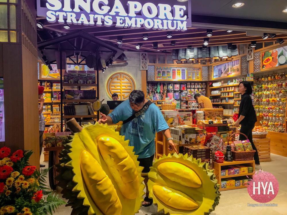 Hongyun-Art--Singapore-International-Summer-Camp-284.jpg