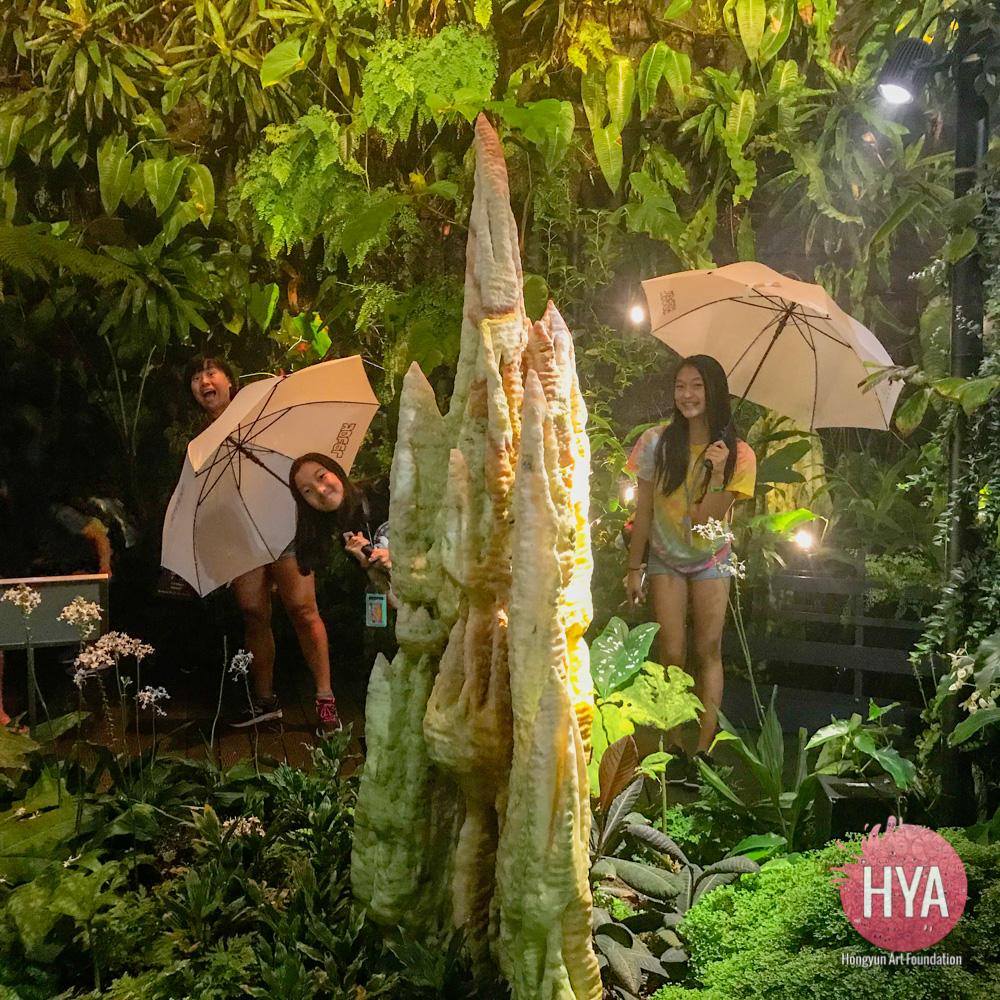 Hongyun-Art--Singapore-International-Summer-Camp-172.jpg