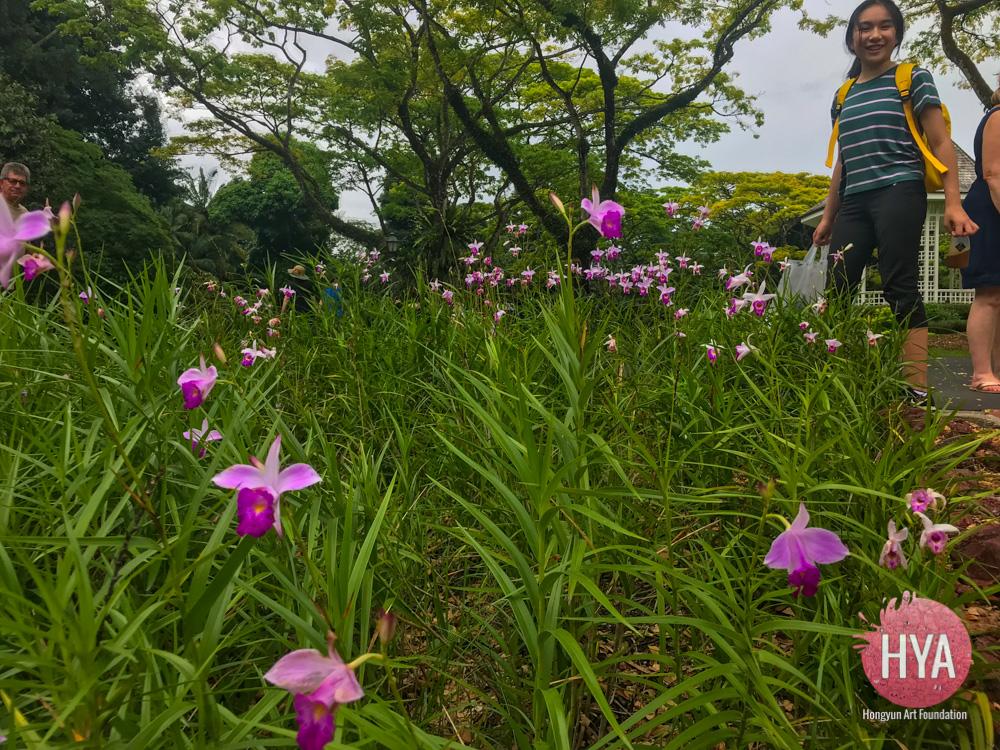 Hongyun-Art--Singapore-International-Summer-Camp-258.jpg