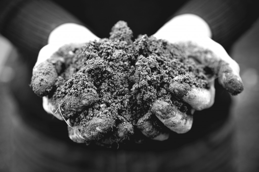 hands-with-soil-1024x682.jpg