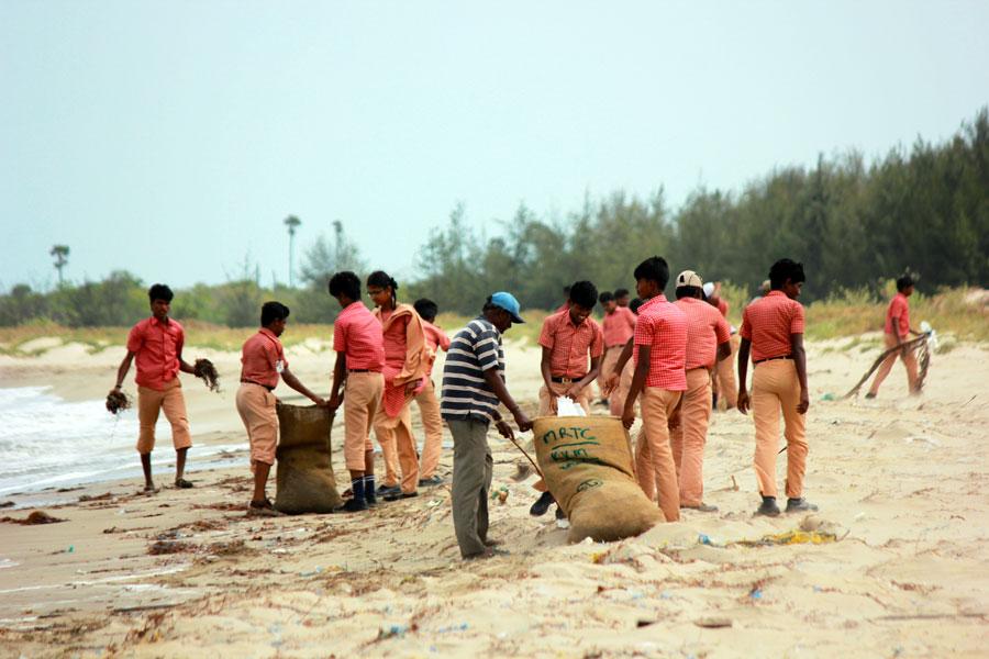 Beach Cleanup Environmental Awareness