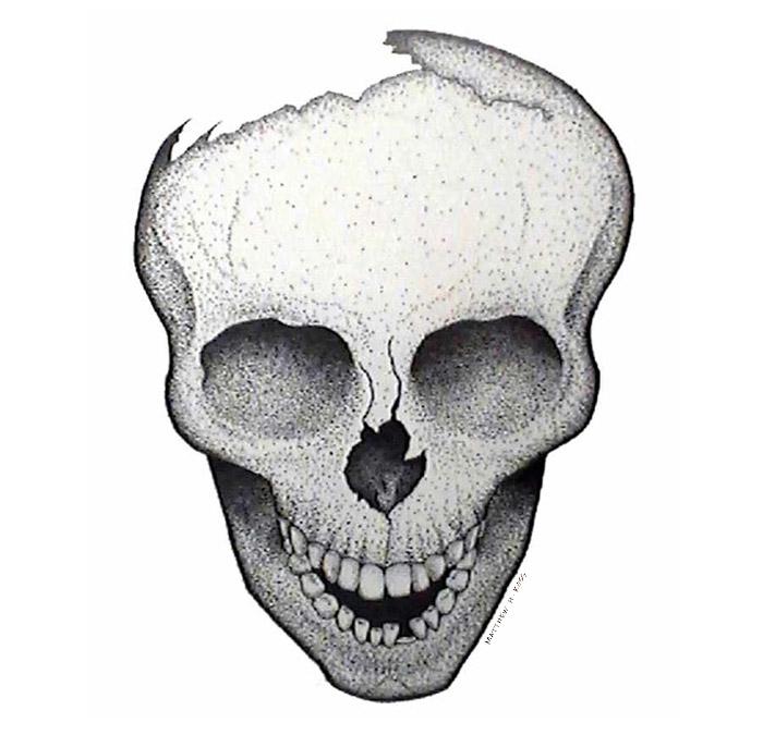 skull_stipple-ink_MattHunterRoss.jpg