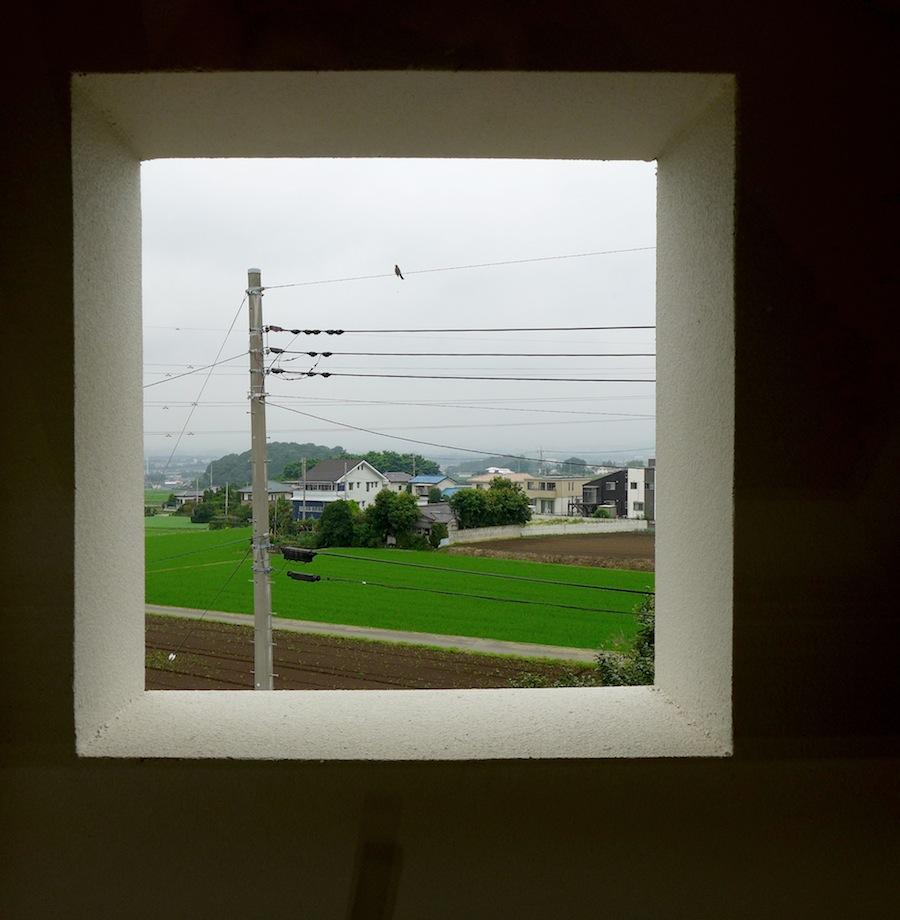 photo by Junko Yamamoto