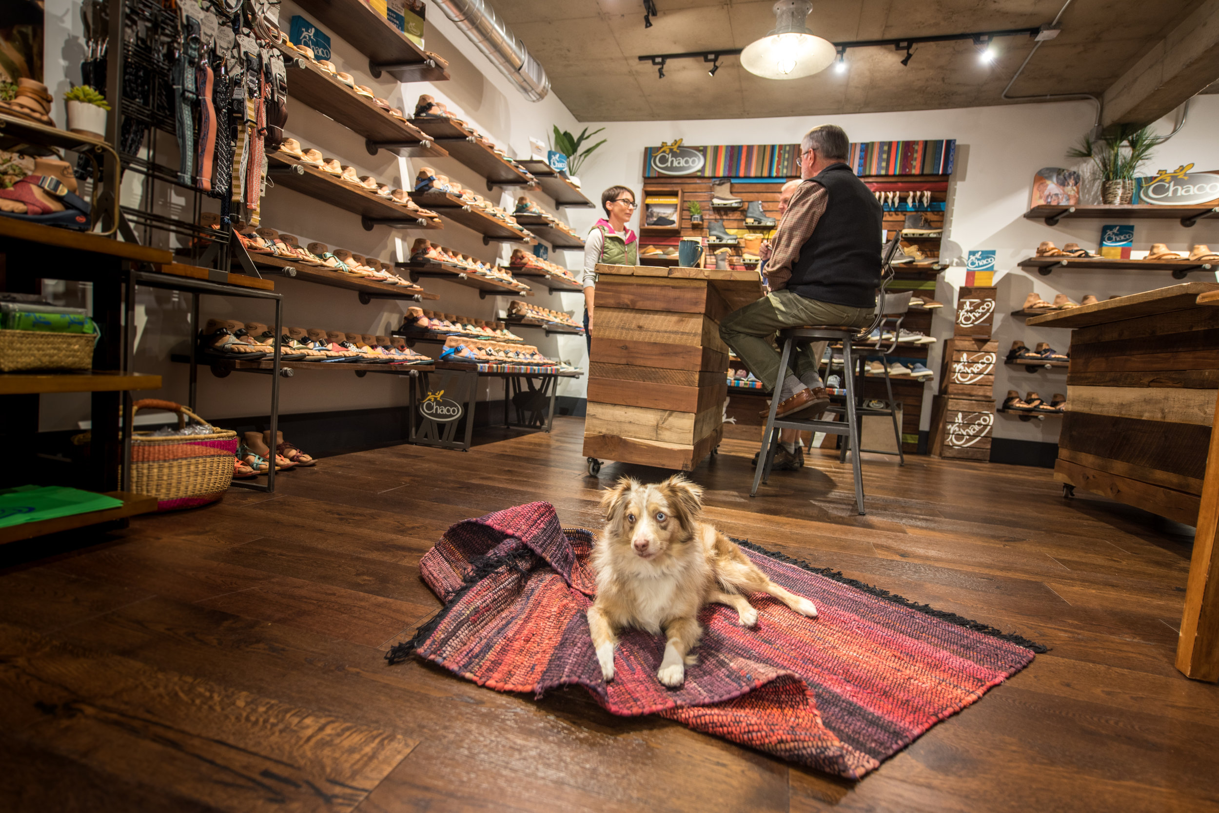 Welcome to the Outdoor Sports Marketing show room where all are welcome including furry friends.