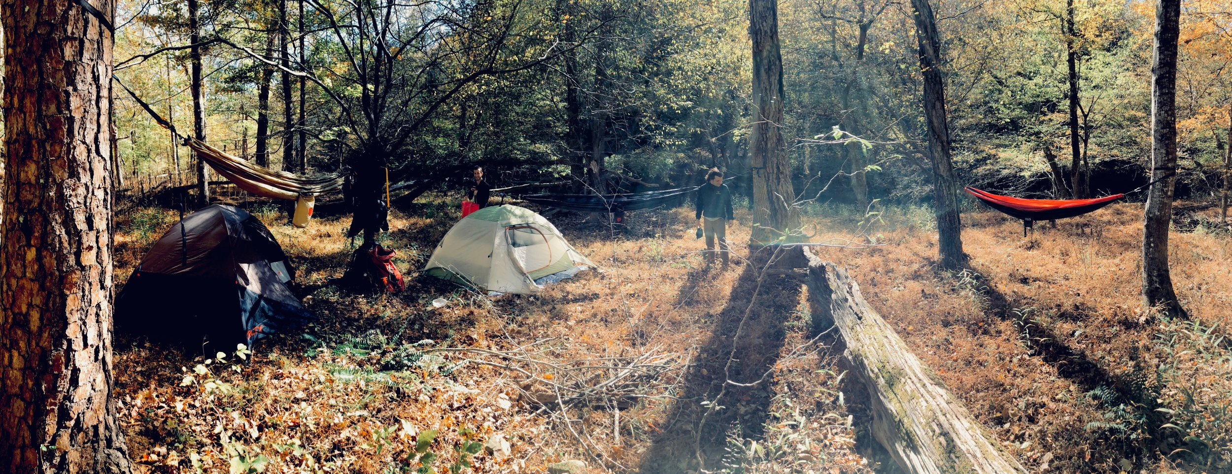 Check out this Eno River State Park camp site complete with Eno hammocks for sunshine relaxing.