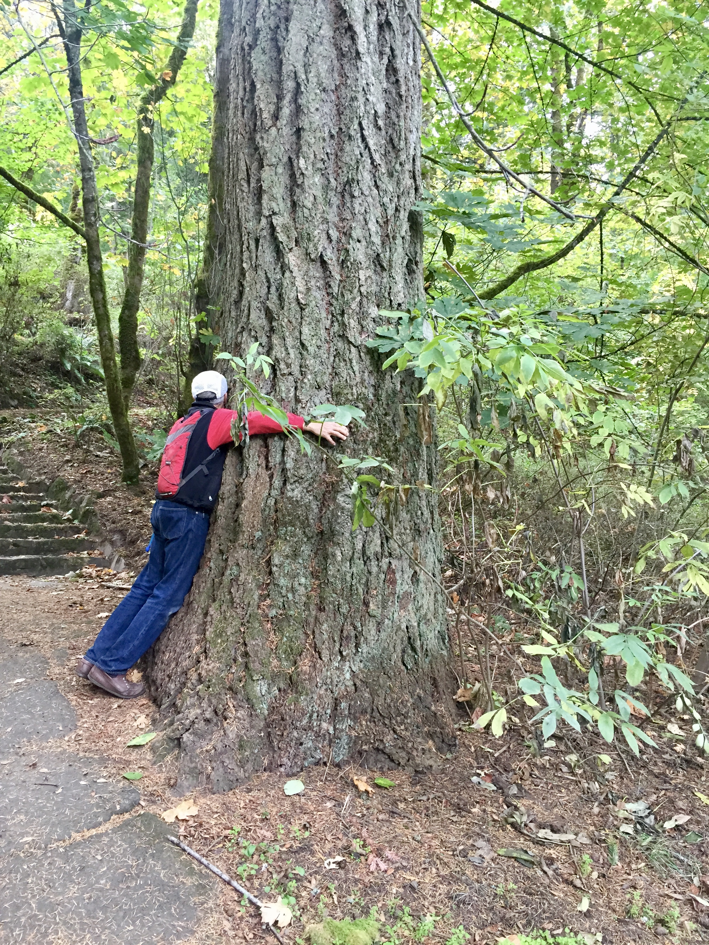 My dad made time to stop and hug trees, to feel their bark under his fingers.