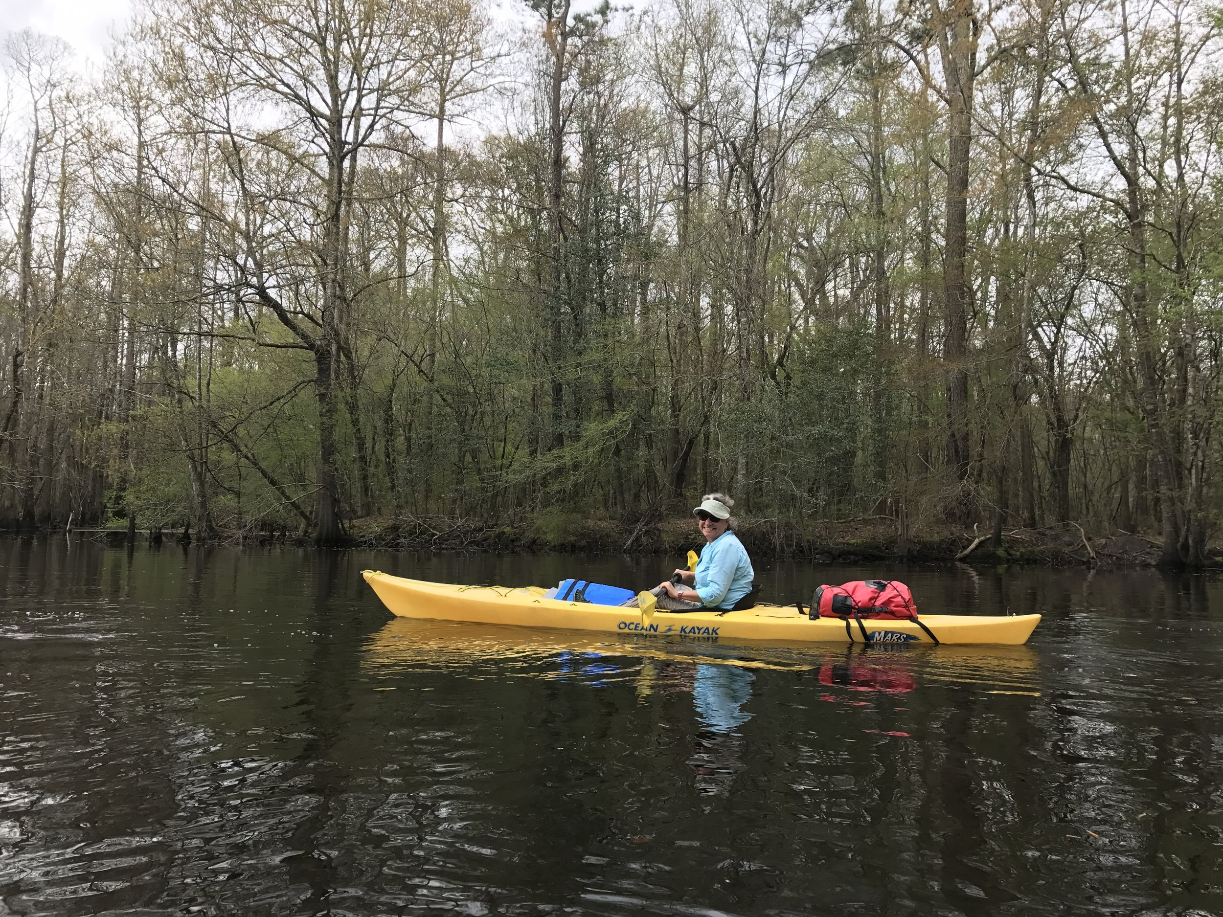 Audrey kayaking in the Three Sisters Swamp exploring the oldest Cypress trees in the world!