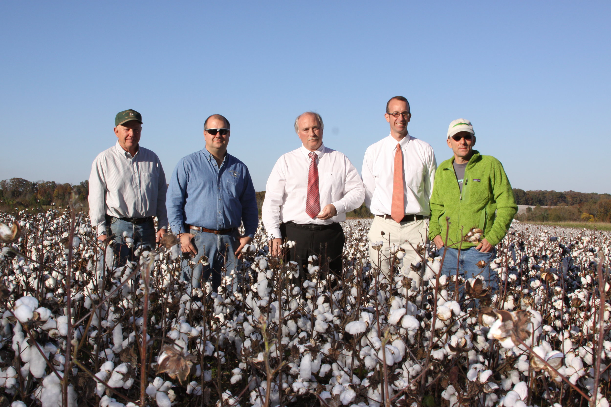 Shareholders meeting in the cotton field