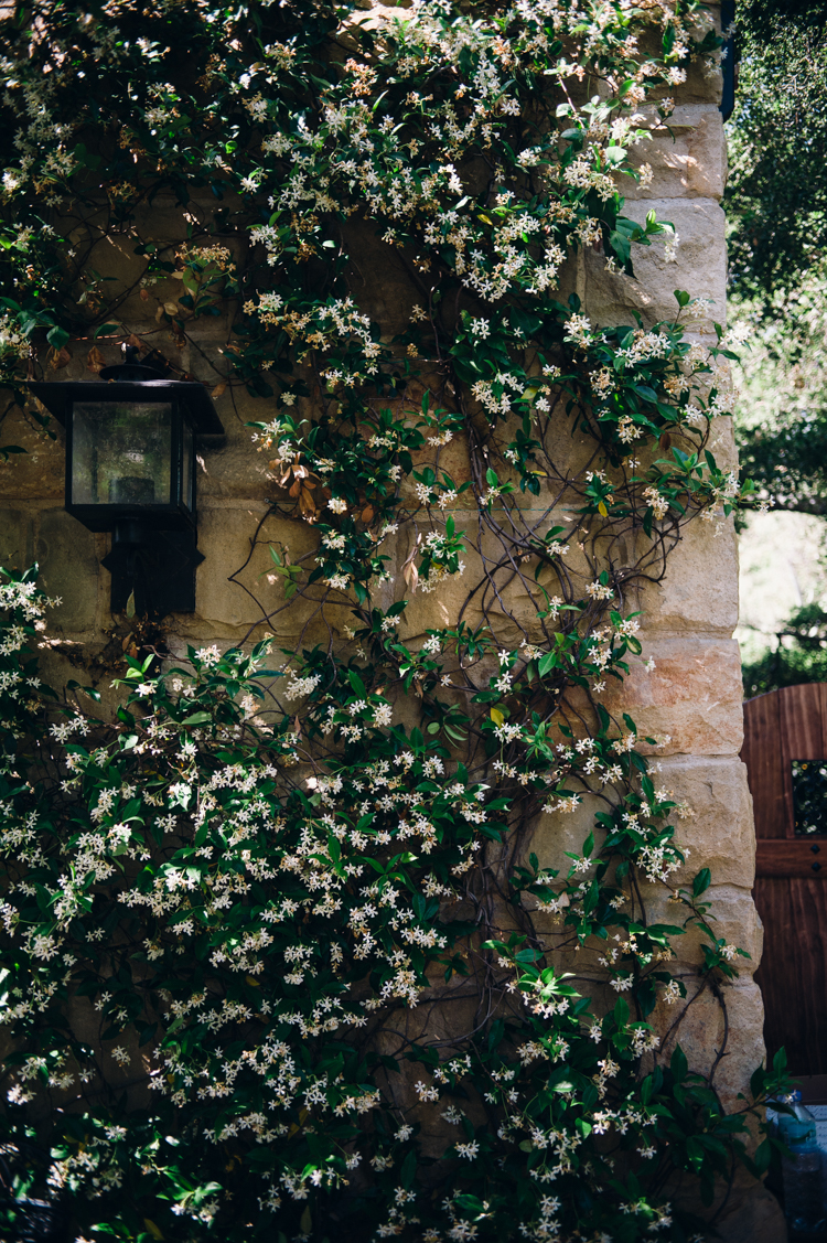 the_mural_room_santa_barbara-1.jpg