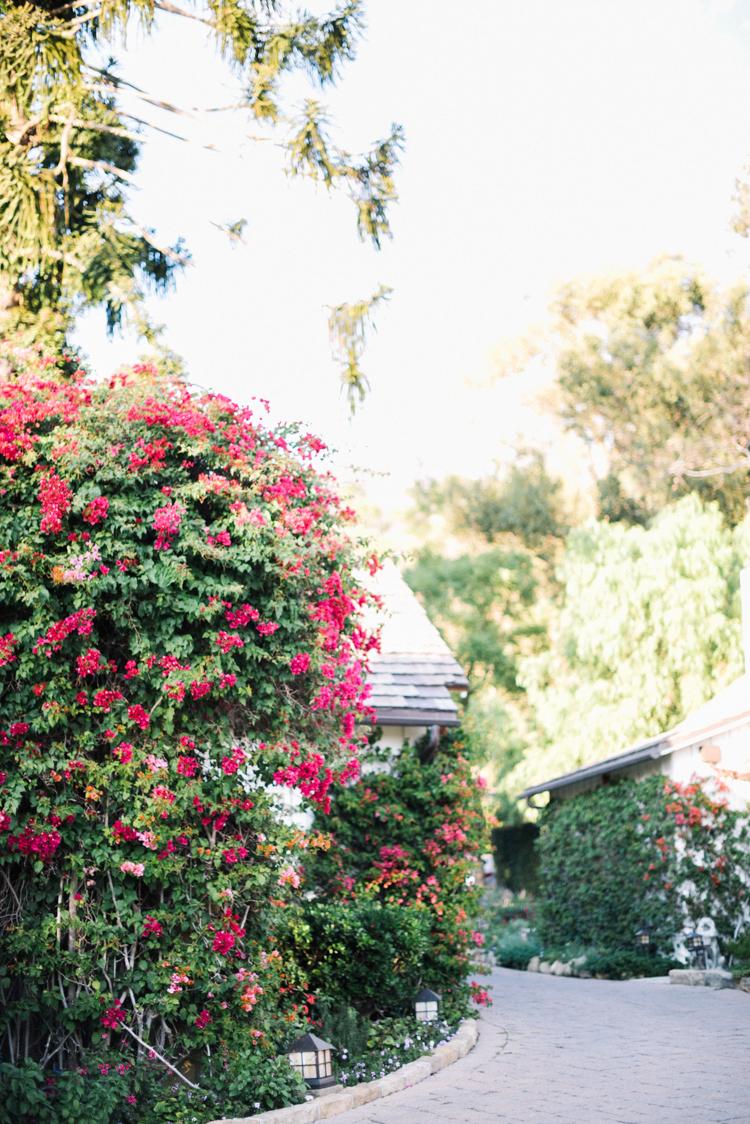 the_mural_room_santa_barbara-34.jpg