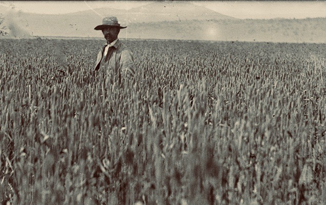 Seth Luelling standing in a field of barley. This field is still growing crops to this day.